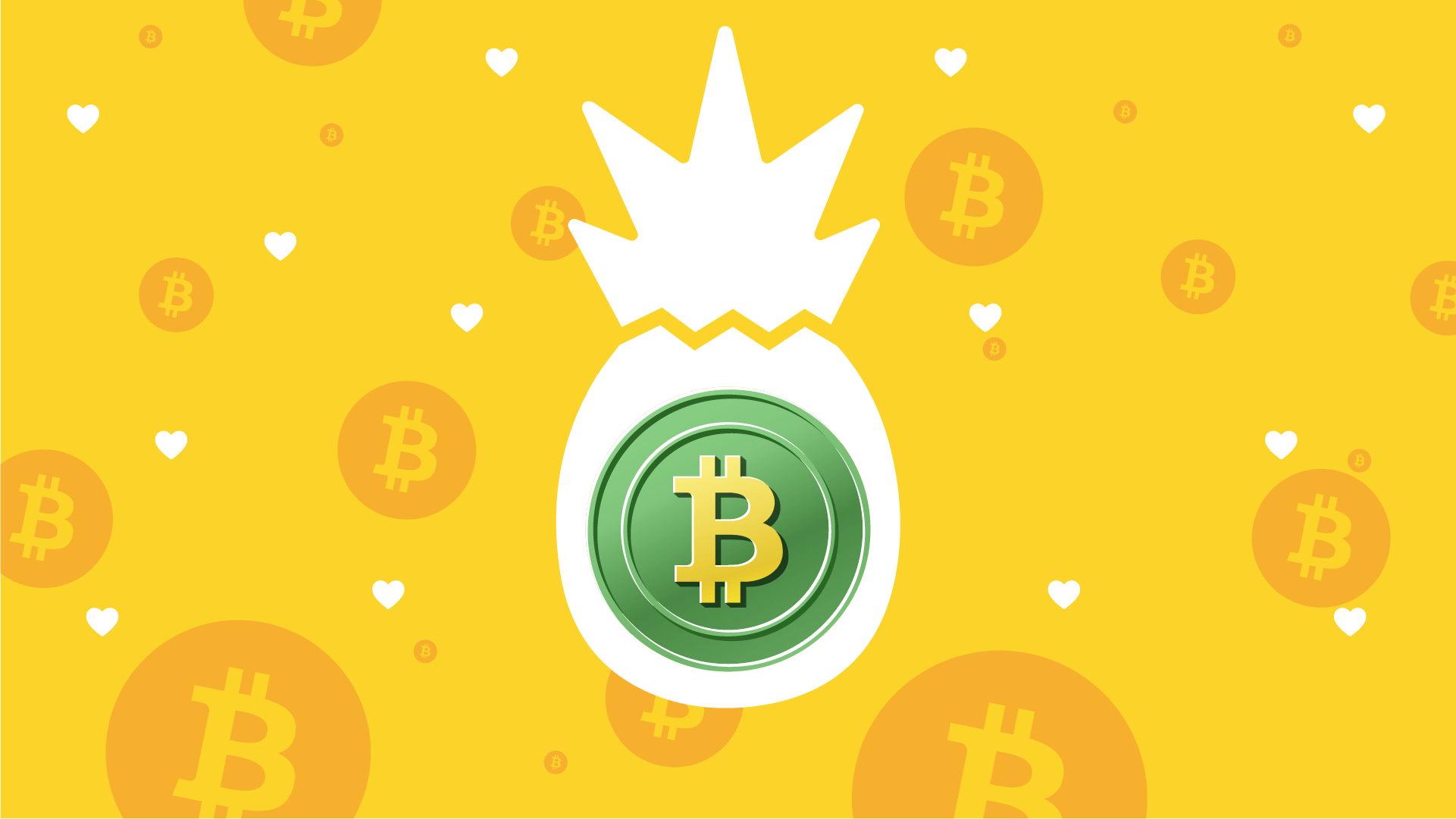 The Pineapple Fund Donated $55M in Nonprofit Bitcoin Grants | The Giving Block
